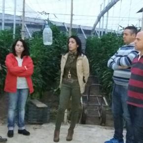 C's Adra considera injusto el baremo utilizado por la Junta de Andalucía para otorgar las ayudas a los agricultores afectados por las riadas de 2015