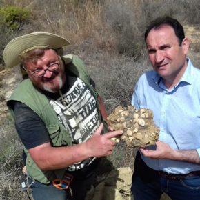 Cs Cuevas del Almanzora, pendiente de las excavaciones en Cirera