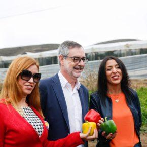 """Villegas: """"En Almería se ha producido riqueza por el empeño de sus ciudadanos, no por la ayuda de las administraciones"""""""