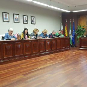 """Almudena Serrano: """"Pedimos al equipo de Gobierno que no empiece con mentiras sobre la bajada de los sueldos"""""""