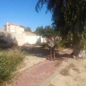 """Cs señala al Ayuntamiento de Roquetas por la proliferación de """"estercoleros"""" y denuncia la falta de mantenimiento de parques y jardines"""