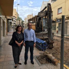 Ciudadanos denuncia la tala indiscriminada de árboles en el centro de El Ejido