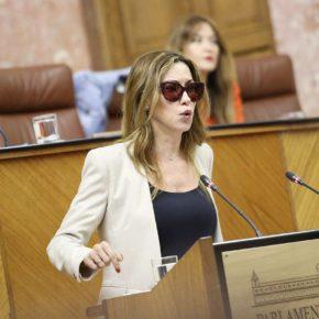 """Mercedes López (Cs): """"La Junta ha destinado casi 41 millones de euros en Almería para dar respuesta a las necesidades de emergencia social"""""""