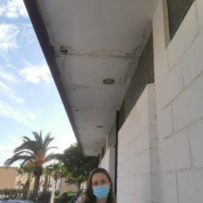 """Mª Herminia Padial """"Exigimos a PP y VOX un mantenimiento mínimo en el Mercado de Abastos de Santo Domingo"""""""