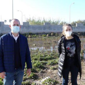 """Cecilio Vargas """"Exigimos una solución a los embalsamientos de aguas en el camino de las cuevecillas de Balerma"""""""