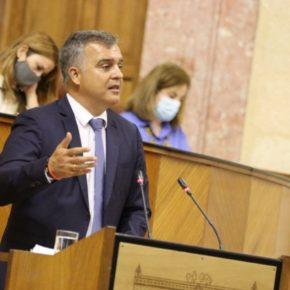 """Pareja: """"Ciudadanos trabajará junto a Almería para que Los Millares sea declarado Patrimonio de la Humanidad por la Unesco"""""""